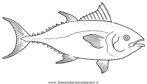 animali/pesci2/tonno.JPG