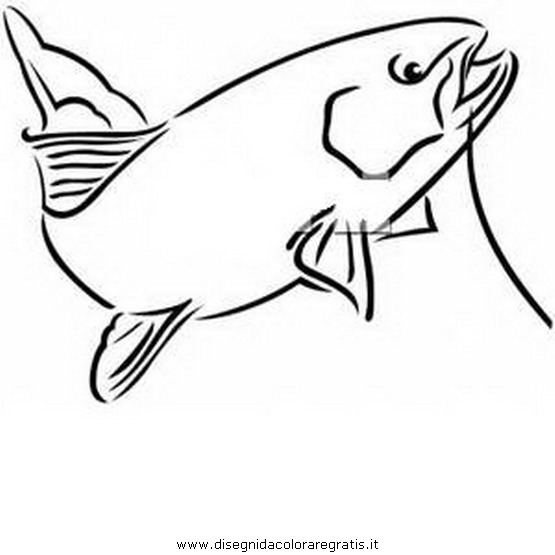 animali/pesci2/trota_01.JPG