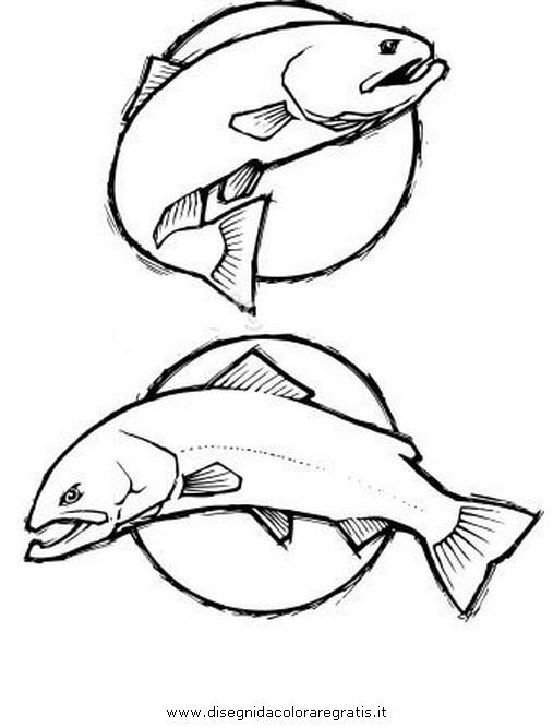 animali/pesci2/trota_02.JPG