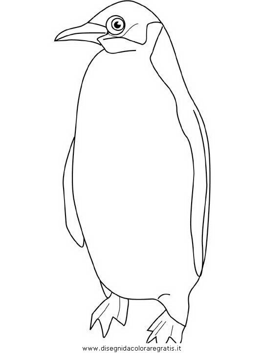 Disegno pinguini pinguino personaggio cartone animato