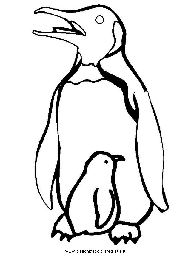 animali/pinguini/pinguino02.JPG