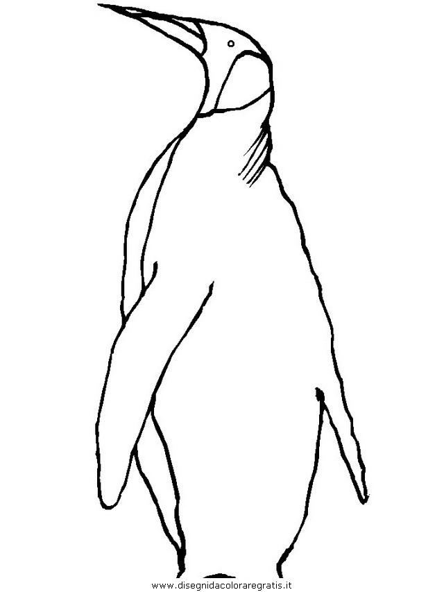 animali/pinguini/pinguino08.JPG