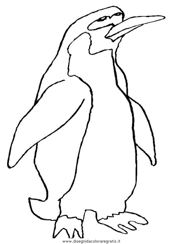 animali/pinguini/pinguino09.JPG