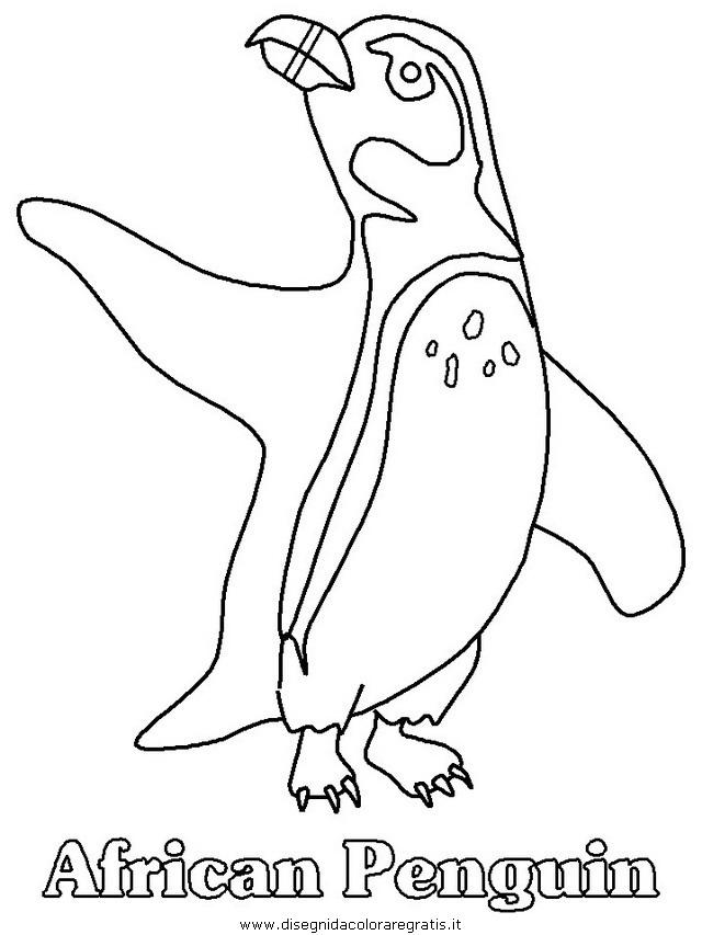 animali/pinguini/pinguino12.JPG