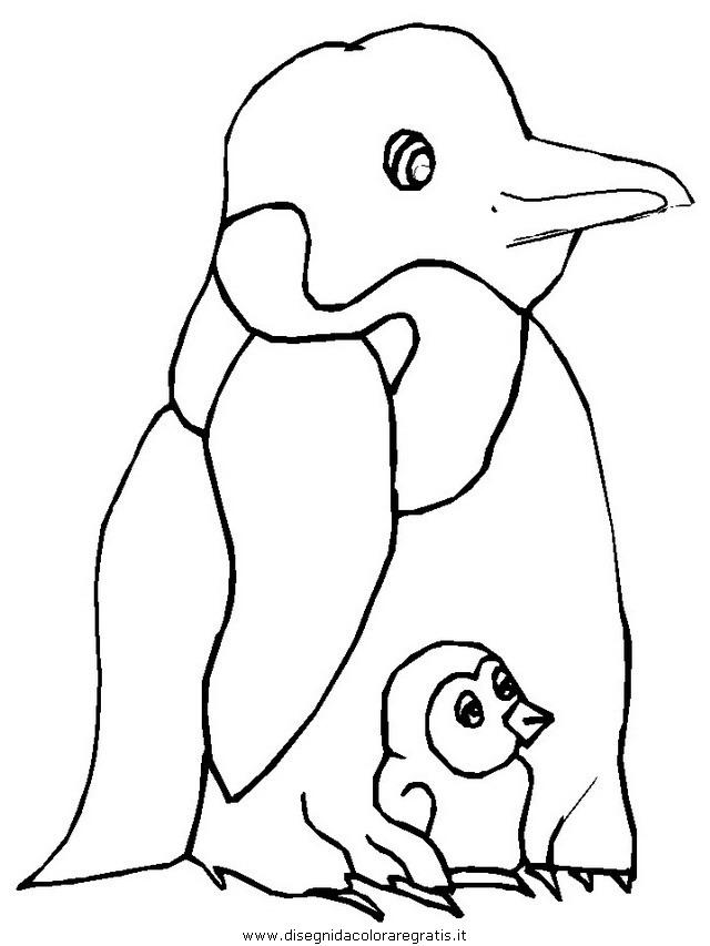 animali/pinguini/pinguino13.JPG