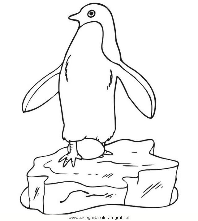animali/pinguini/pinguino_26.jpg