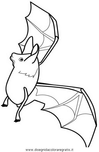 animali/pipistrelli/pipistrello_pipistrelli9.jpg