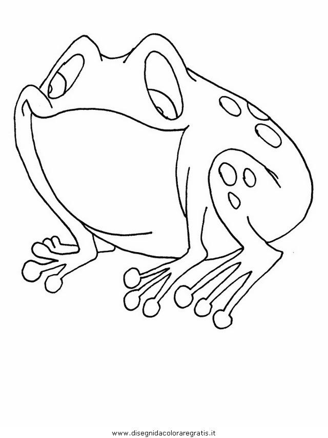 Disegno Rana 10 Animali Da Colorare