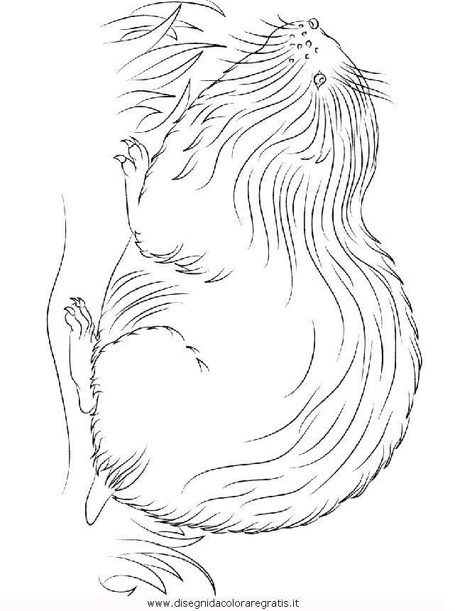 animali/roditori/lemming.JPG
