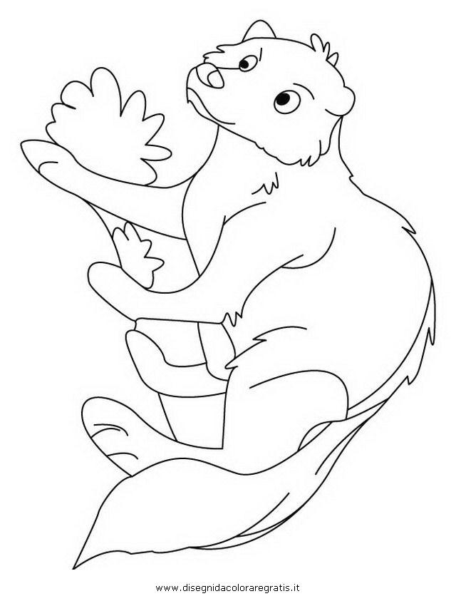 animali/roditori/mangusta_1.JPG