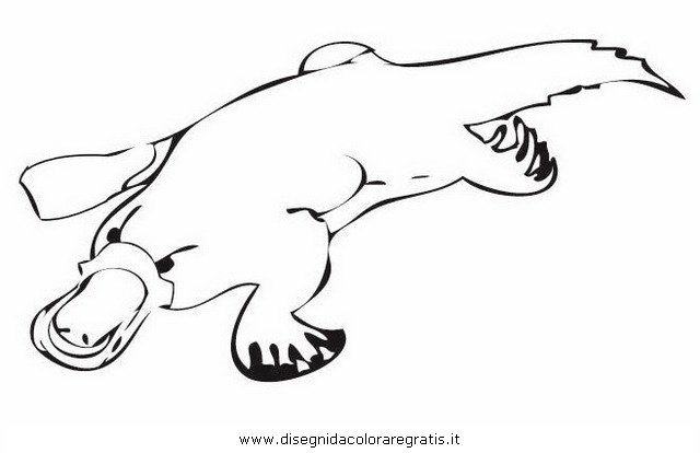 free platypus coloring pages - photo#28