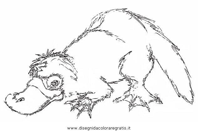 animali/roditori/ornitorinco_platypus_05.JPG