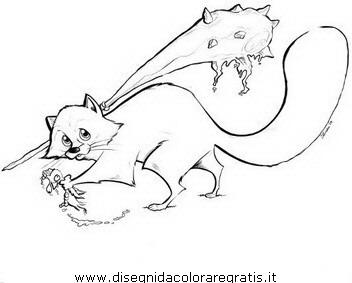 animali/roditori/procione_procioni_12.JPG