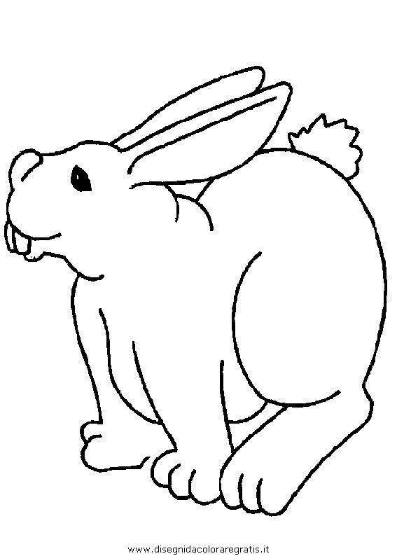 animali/roditori/roditori_116.JPG