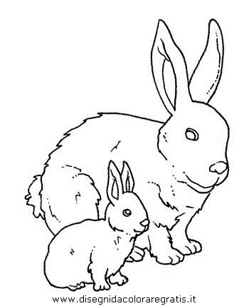 animali/roditori/roditori_16.JPG