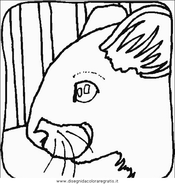 animali/roditori/roditori_topo_09.JPG