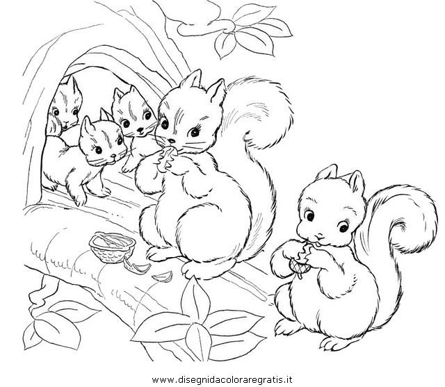animali/roditori/scoiattolo_01.JPG