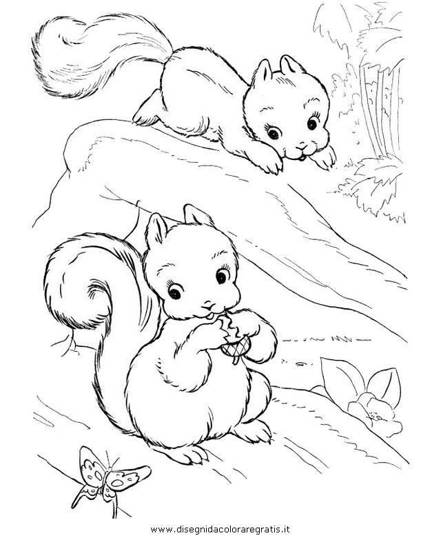 animali/roditori/scoiattolo_02.JPG
