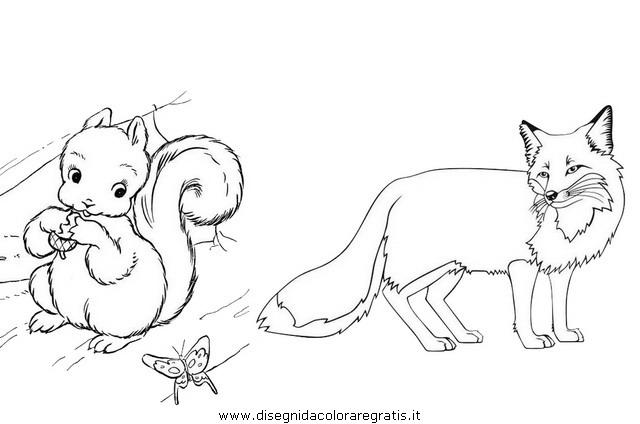 animali/roditori/scoiattolo_02b.JPG