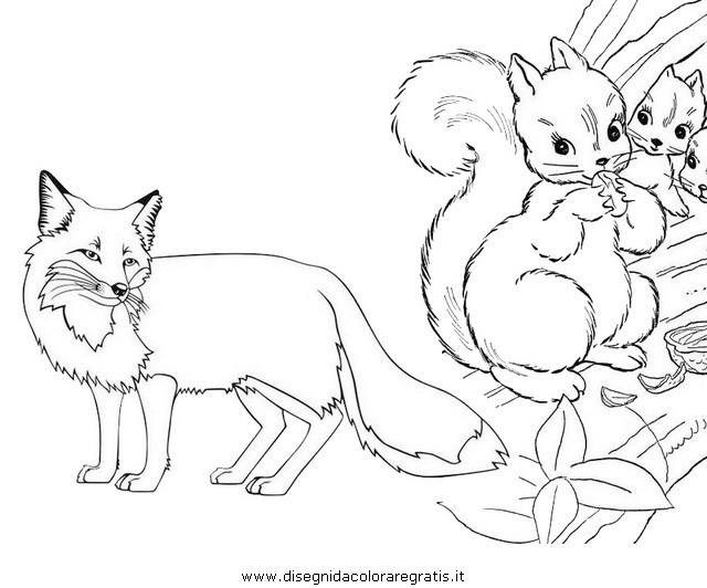 animali/roditori/scoiattolo_02c.JPG