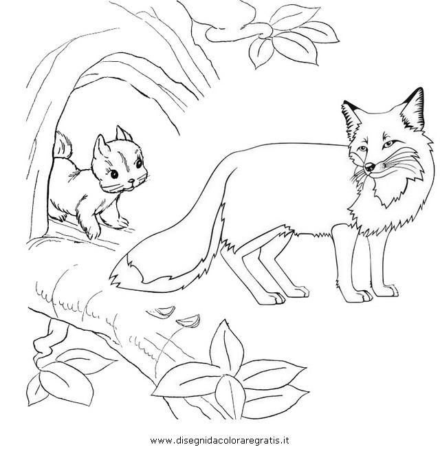 animali/roditori/scoiattolo_02d.JPG