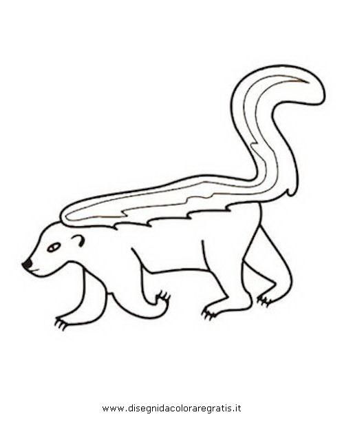 animali/roditori/tasso_tassi_01.JPG