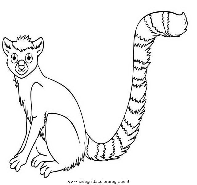 animali/scimmie/lemure_7.JPG