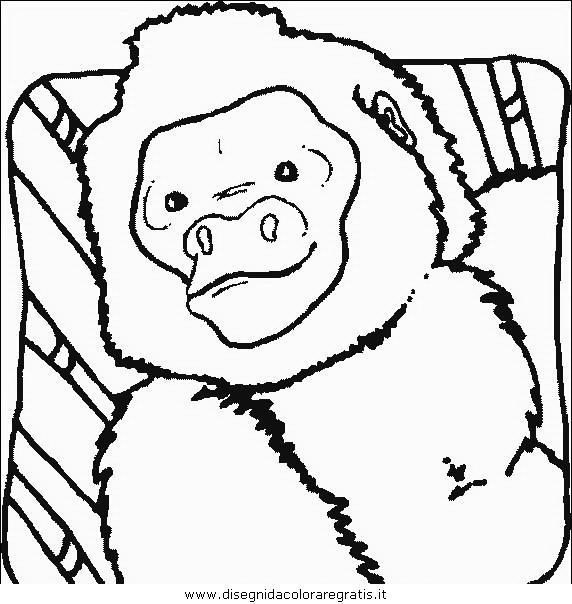 animali/scimmie/scimmia_01.JPG