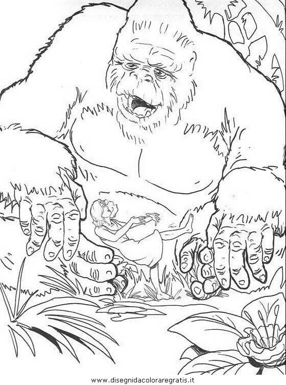 animali/scimmie/scimmia_09.JPG