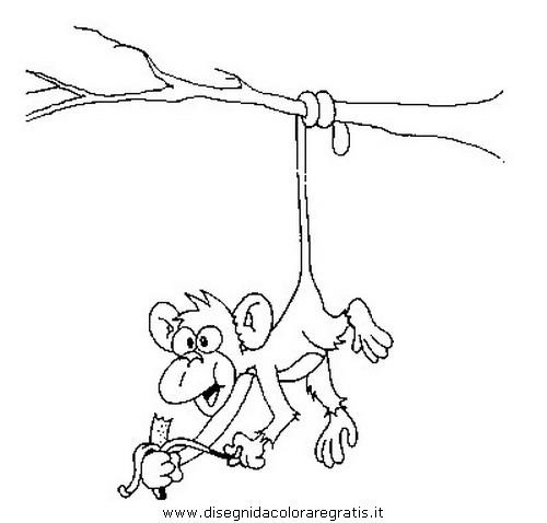 animali/scimmie/scimmia_15.JPG