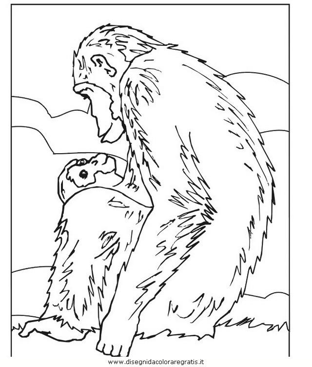 animali/scimmie/scimmia_19.jpg