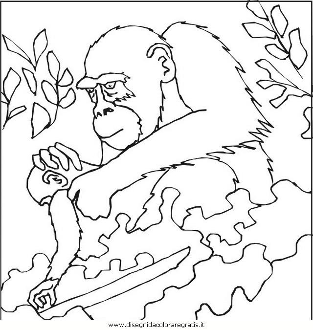 animali/scimmie/scimmia_24.jpg