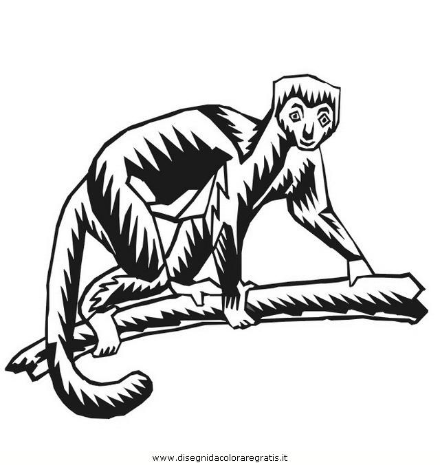 animali/scimmie/scimmia_28.jpg