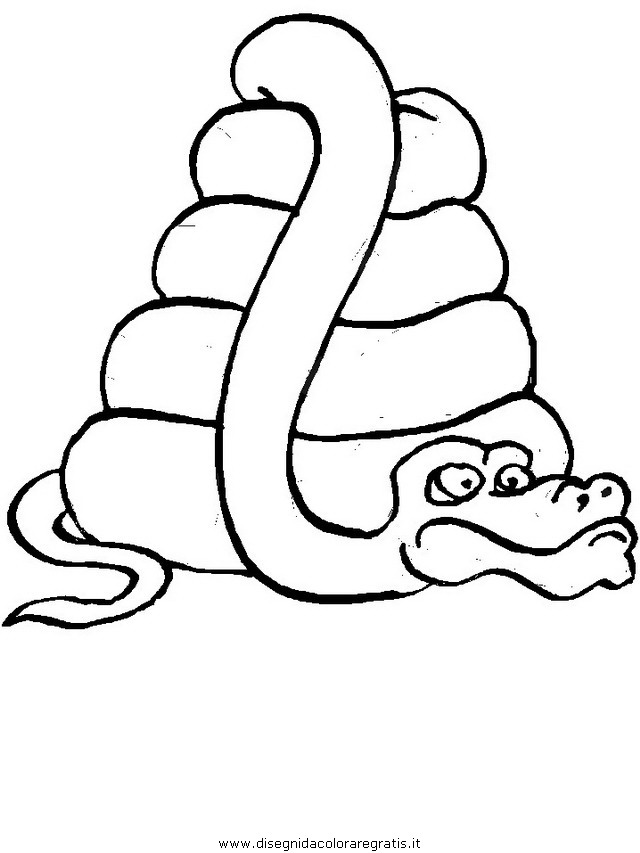 animali/serpenti/serpente_13.JPG
