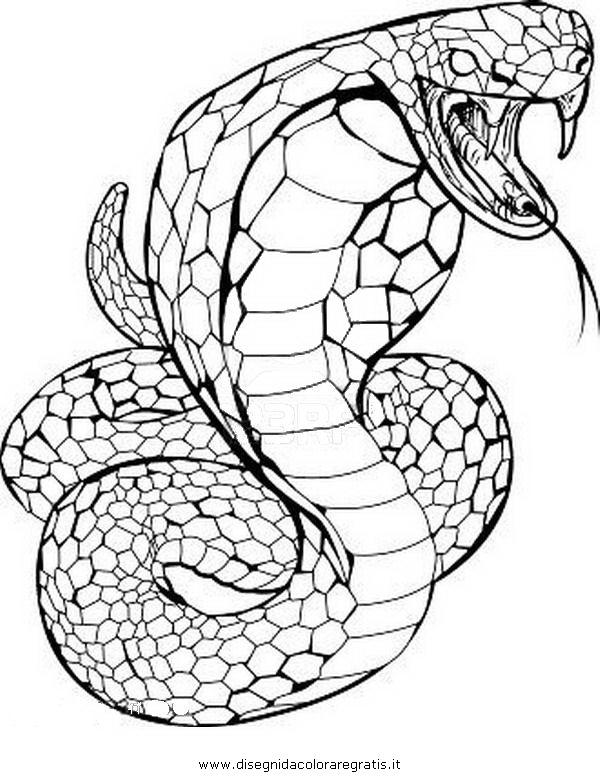Disegno serpente_51 an...