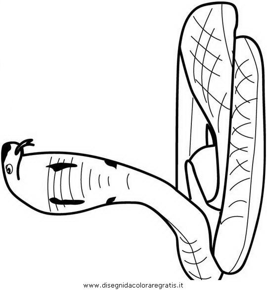 animali/serpenti/serpente_a6.JPG