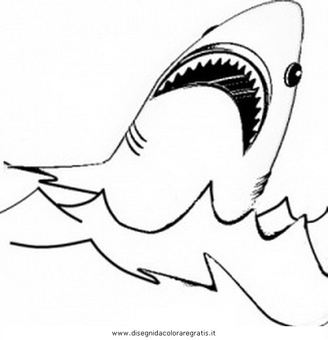 Disegno squalo megalodonte 02 animali da colorare for Immagini tigre da colorare