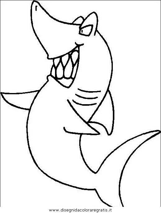 animali/squali/squalo_squali_13.JPG