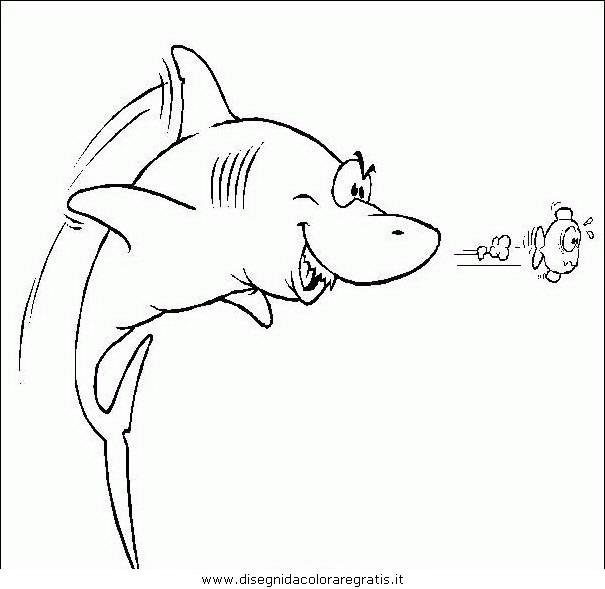 animali/squali/squalo_squali_16.JPG