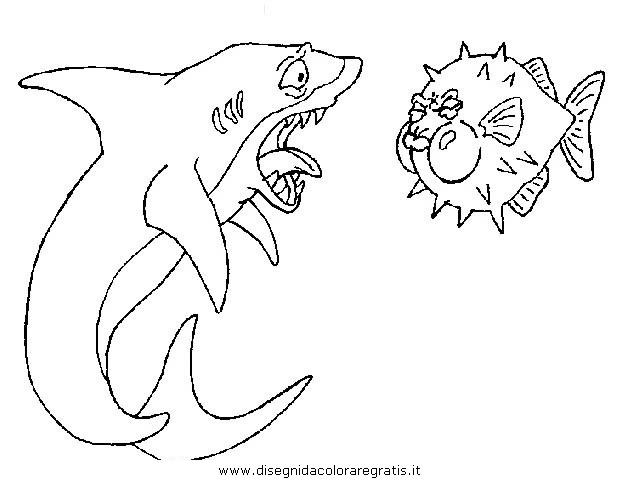 animali/squali/squalo_squali_27.JPG