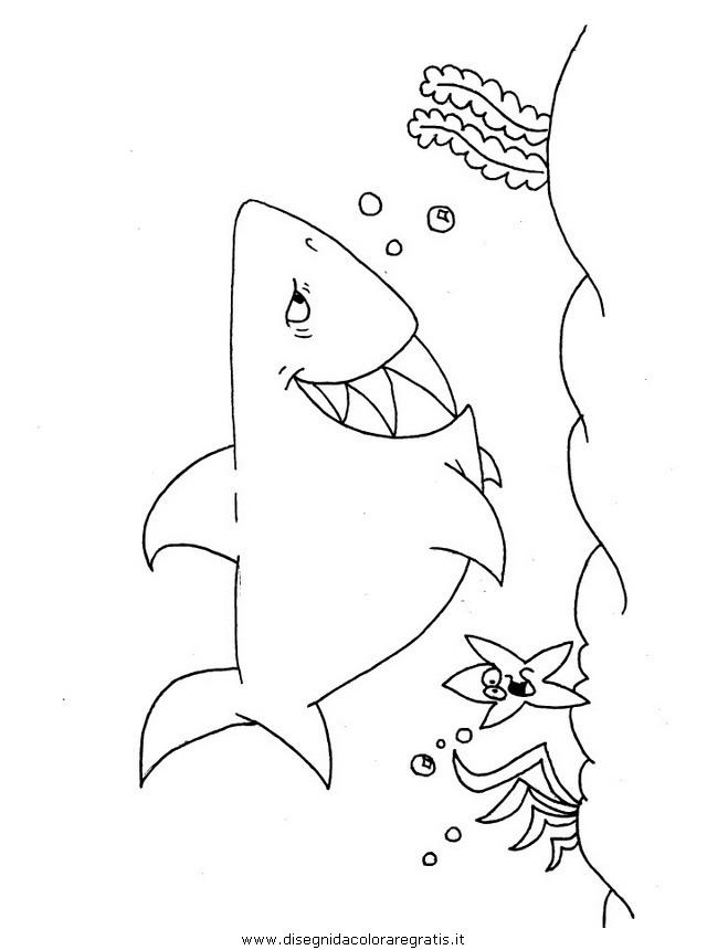 animali/squali/squalo_squali_32.JPG