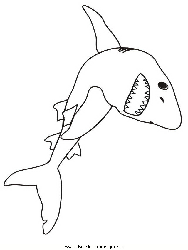 animali/squali/squalo_squali_42.jpg