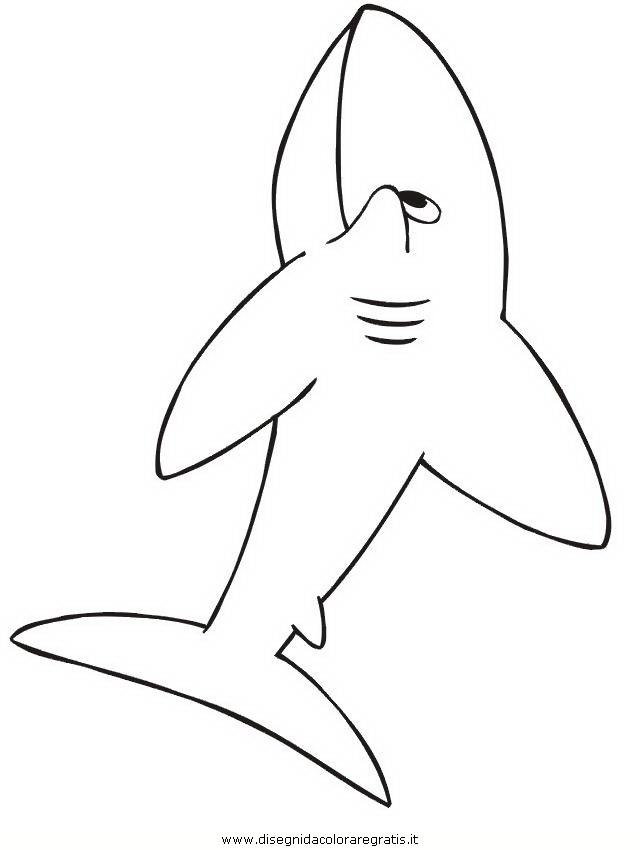 animali/squali/squalo_squali_46.jpg