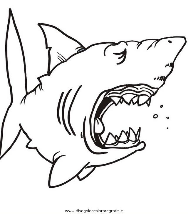 Pin squalo disegni da colorare per bambini pesce on pinterest for Immagini squali da stampare