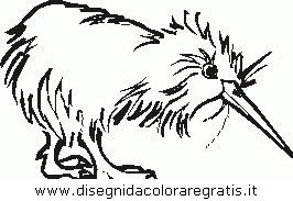 animali/tacchini/tacchino_gallina_38.JPG
