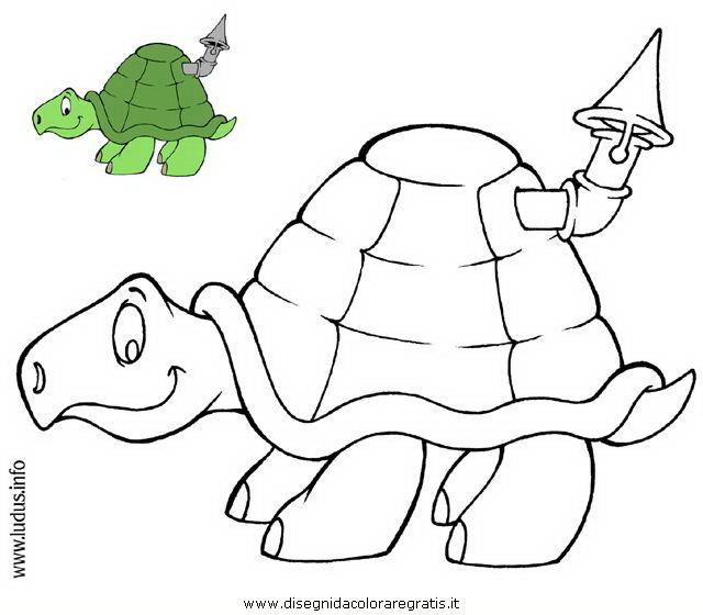 animali/tartarughe/tartaruga.JPG