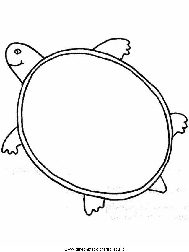 animali/tartarughe/tartaruga_06.JPG