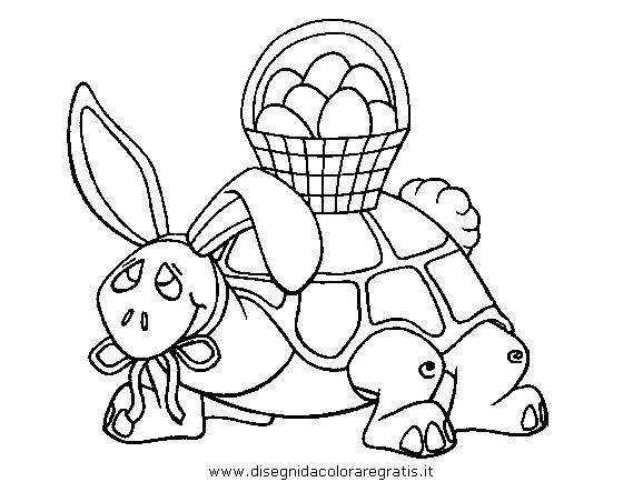 animali/tartarughe/tartaruga_08.JPG
