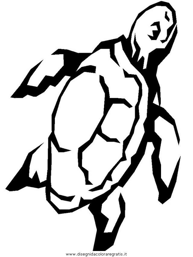 animali/tartarughe/tartaruga_16.JPG