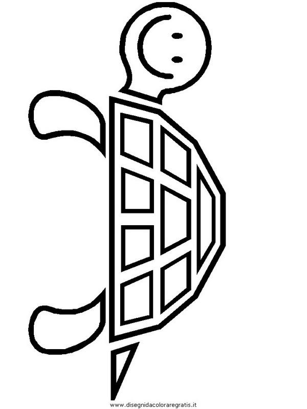 animali/tartarughe/tartaruga_19.JPG